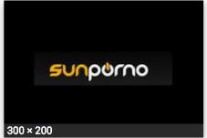 Sunporno logo